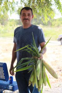 Project Assistant, Felipe Perez Holding Freshly Picked Corn From The Garden